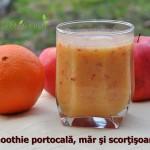 Smoothie de portocală, măr şi scorţişoară