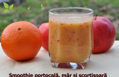 smoothie portocala mar si scortisoara