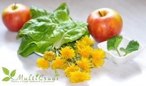 smoothie verde cu flori de papadie