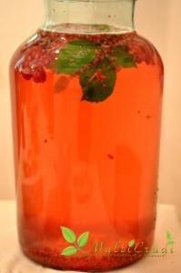 apa enzimatică zmeură, pepene verde şi grapefruit